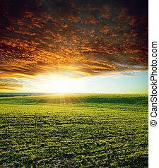 農業, 綠色, 傍晚領域