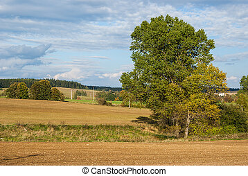 農業, 風景
