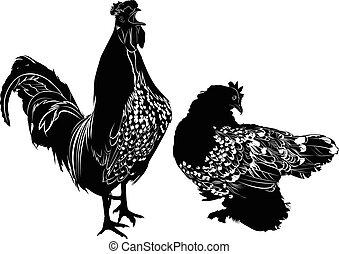 農業, 鳥, 手製, おんどり