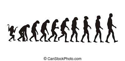 进化, 人类