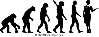 进化, 女乘务员