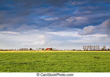 迷人, 房子, 上, 農田, 在, 風暴