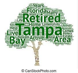 退休, 家, 在, tampa, 海灣, 正文, 背景, 詞, 雲, 概念