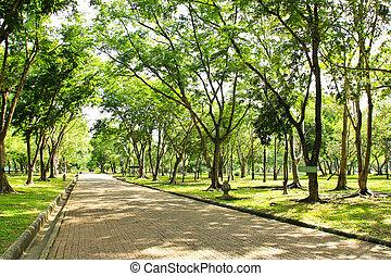 通り道, 公園