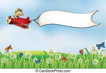 運ばれた, 飛行機, 白, 旗, 空, サル