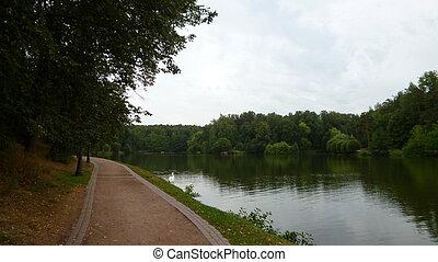 運河, 方向, 都市でない, 美しさ, 自然の色, 減少, 現場, 植物, 成長, 緑, 見通し, 屋外で, 日, 道
