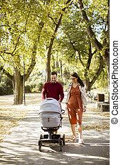 運転, 幸せ, 赤ん坊, 親, 公園, 歩くこと, 乗り物, 若い
