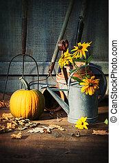 道具, 小屋, 花, 庭, カボチャ