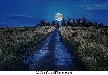 道路, 对于, 月亮