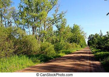 道, 国, ミシガン州, 43