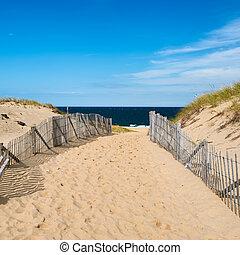 道, 方法, へ, ∥, 浜, ∥において∥, ケープコッド