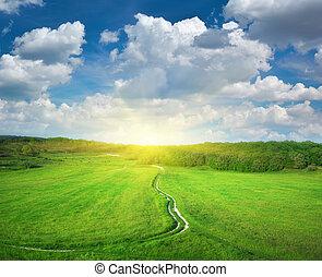 道, 車線, そして, 海原, 青, sky.