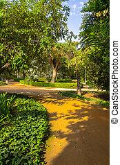 道, malaga, parque, de, によって, エステ, 庭, 散歩しなさい