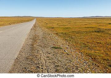 道, mongolian, アスファルト, ステップ