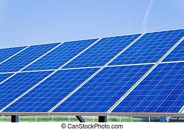 選択肢, 太陽, energy., 力, plant.