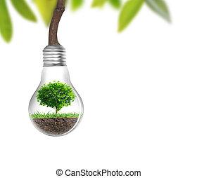 選択肢, 電球, ライト, 概念, エネルギー