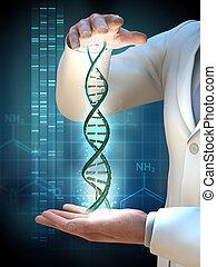 遺伝子の研究