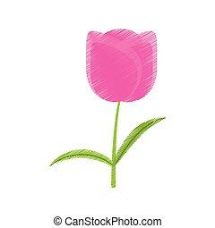 郁金香, 植物, 花, 圖畫, 浪漫