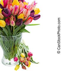 郁金香, 花, 在, 玻璃瓶