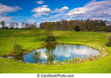 郡, pennsylvania., ヨーク, 田園, 池, 光景