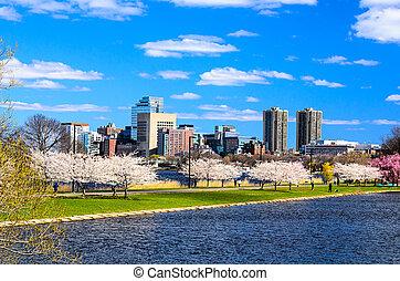 都市の景観, ボストン