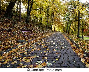 都市, ばらまかれる, 葉, 公園, 黄色, 秋, 小道, 落ちている