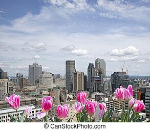都市, モントリオール