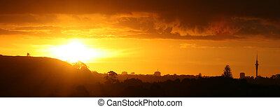 都市, 上に, 素晴らしい, 日没, オークランド