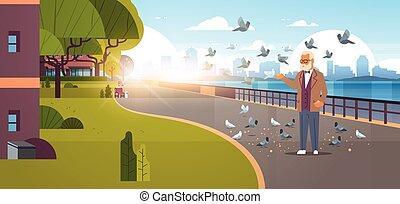 都市, 供給, 波止場, 超高層ビル, 一団, 都市, 現代, ハト, 平ら, 背景, 都市の景観, 横, 旗, 年長 人