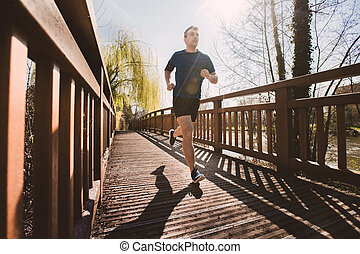 都市, 橋, ランナー, 上に, 公園, 走っている男性