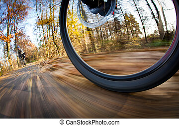 都市, 自転車公園, autumn/fall, 乗馬, 美しい, 日