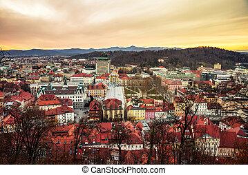 都市, 航空写真, 中心, スロベニア, ljubljana, 光景