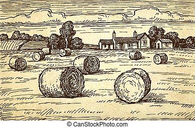 鄉村, bales., 風景, 干草