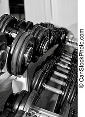 重量訓練, 設備, 在, 健身俱樂部