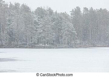 重, 岸, 风景, 湖, 降雪
