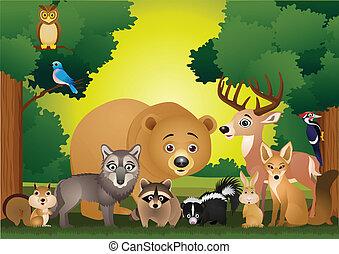 野生動物, 卡通