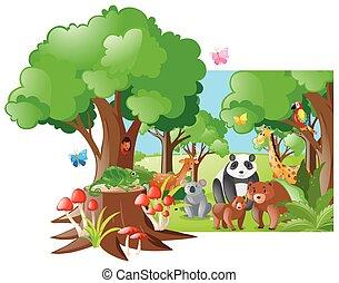 野生動物, 森林