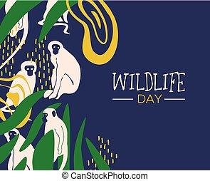 野生生物, 日, ジャングル, カード, ∥で∥, 猿