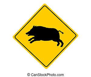 野生的野豬, 警示