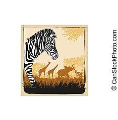 野生, アフリカ, カード, ∥で∥, シマウマ, 象, そして, キリン