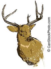 野生, ベクトル, 鹿, イラスト