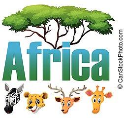 野生 動物, 中に, アフリカ