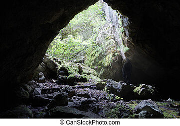 野生, 洞穴, crimea, 山, 発見する, ウクライナ