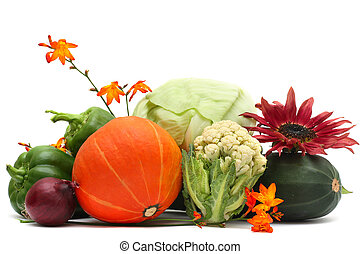 野菜, そして, 秋, 花, 隔離された, 白, 背景