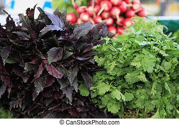 野菜, ∥において∥, a, 農夫の 市場