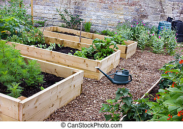 野菜, 国, 上げられた, 庭, ベッド