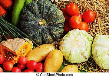 野菜, 新たに