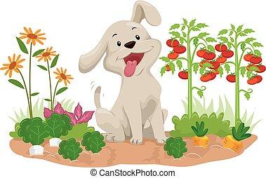 野菜, 犬, イラスト, 庭