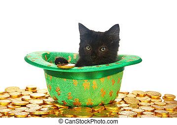 金貨, 1(人・つ), 黒, 聖者, 子ネコ, 帽子, patrick's, 日