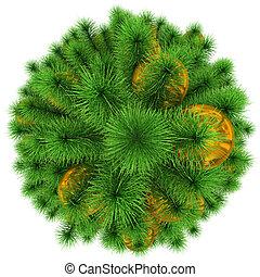 金, ボール, 木の上, -, 隔離された, クリスマス, 白, 飾られる, 光景
